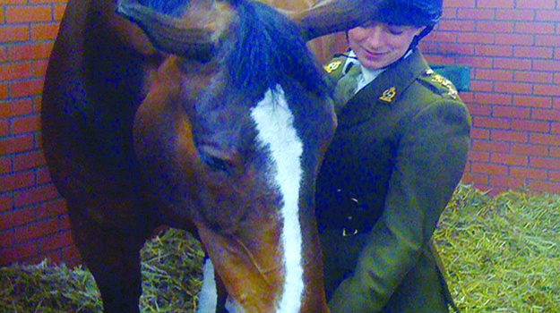 From the army to equine practice