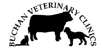 Buchan Veterinary Clinics logo