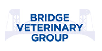 Bridge Vets logo