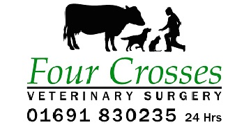 Four Crosses Veterinary Surgery logo