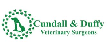 Cundall and Duffy logo