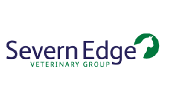Severn Edge logo