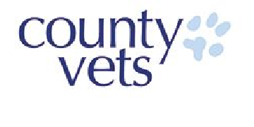 County (Friarswood) logo