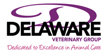 Delaware Veterinary Group logo