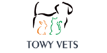 Towy Vets logo