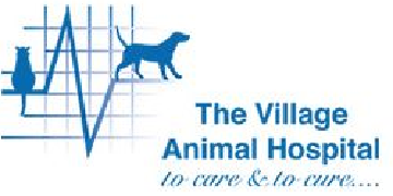 Village Animal Hospital - Tanhouse logo