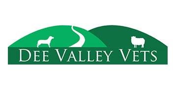 Dee Valley Vets logo