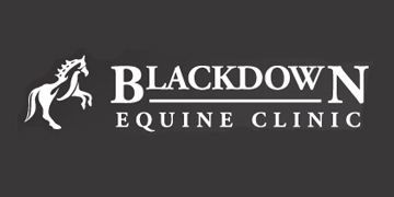 Blackdown Equine Clinic logo