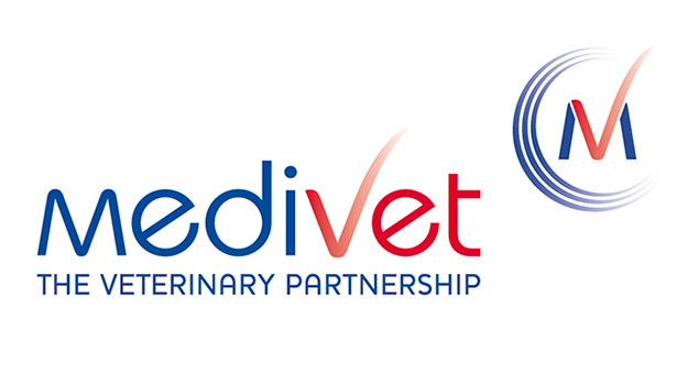 Medivet new graduate programme - working with a 'buddy'