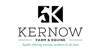 Kernow Veterinary Group logo