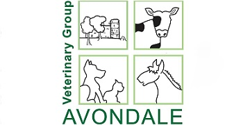 Avondale Veterinary Group logo