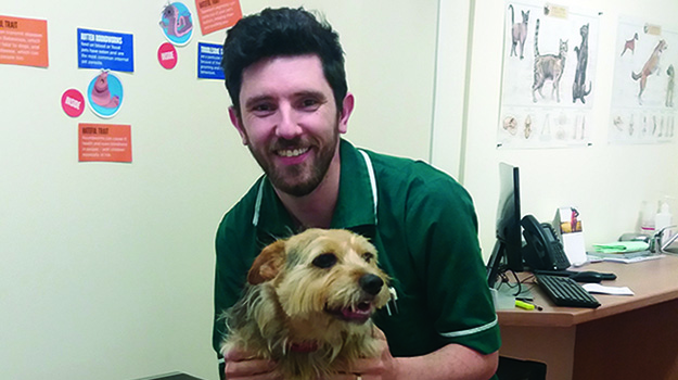 Encouraging men to consider veterinary nursing careers