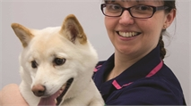 Vet nurse and JVP: a week with Helen Russell